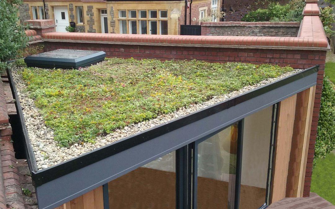 irregular triangular shape garden room, Sedum roof, garden studio